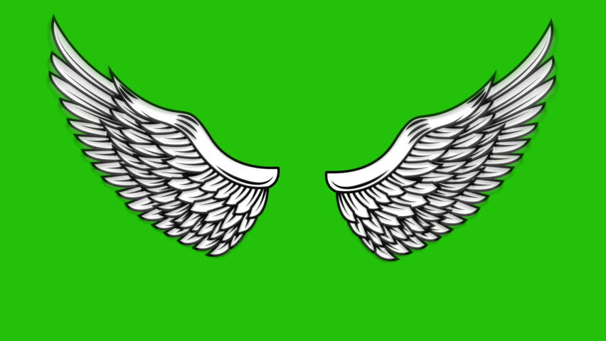 Green Background Angel Wings
