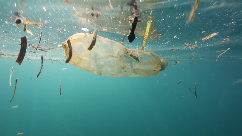 Plastic bag floating underwater at Bunaken Island, Indonesia #31132363