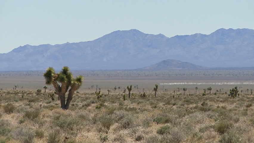 Official Vehicle Races Across Desert from Area 51