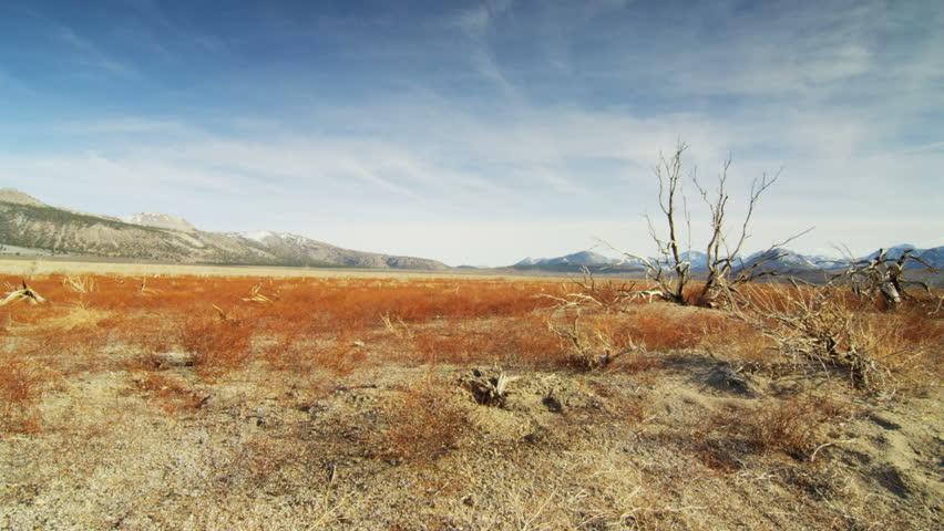 Trailing along the desert | Shutterstock HD Video #31168201