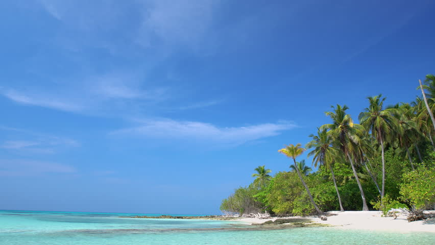 Tropical island at maldivian atoll in Indian Ocean. Wild  and uninhabited coast with palm trees. Travel destinations    Shutterstock HD Video #31244890