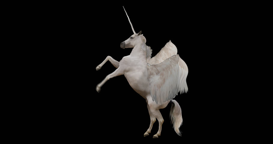 Pegasus and winged Unicorn rearing on a transparent background. Isolated and cyclic animation. Alpha channel. Royalty-Free Stock Footage #31252603