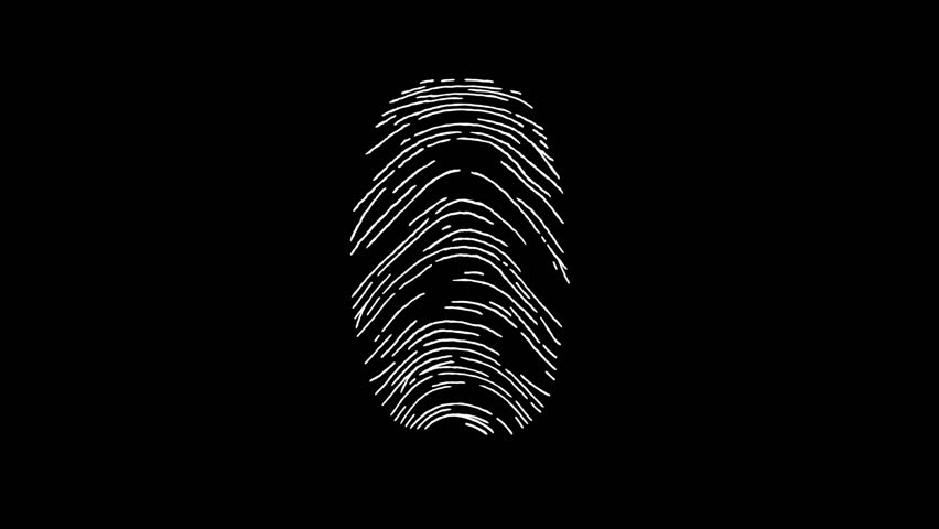 Ten human fingerprints, including the basic patterns: arch, loop and whorl. Biometric search and authentication. Security technology. Black and White. | Shutterstock HD Video #31333732