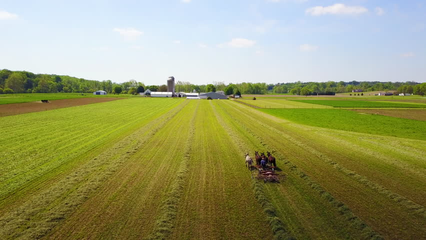 CIRCA 2010s - United States - An amazing aerial of Amish farmers tending their fields with horse and plow.