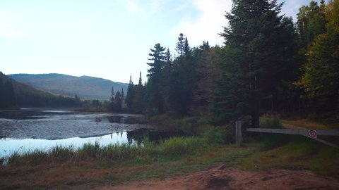 Calm Morning With Nature in Mont-Tremblant National Park