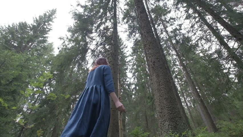 Pine forest,Beautiful woman in pine forest,beautiful girl walking in pine forest.