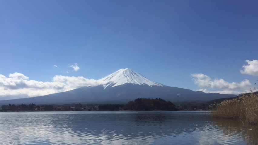 Mt. Fuji at Kawaguchiko lake in blue sky day with one small duck, Japan. Time-lapse | Shutterstock HD Video #31536466