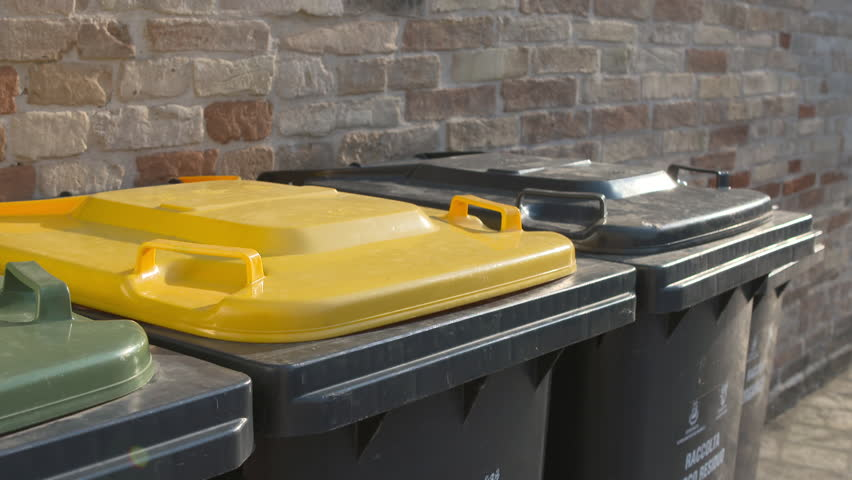 Children drops the trash recycling bin.  #31569304
