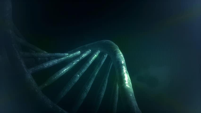 DNA loop 3D animation