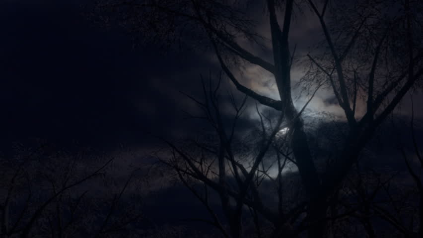 Forest and moon at night. Moving through a spooky forest as an eerie moon rises through fast moving clouds.4K | Shutterstock HD Video #31600720