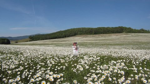 Little girl dressed in a traditional Ukrainian costume in a meadow.