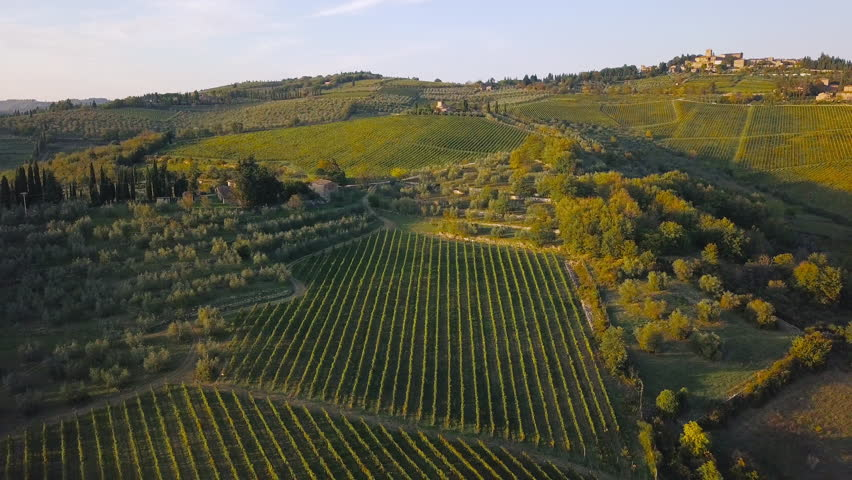 Aerial nature landscape beautiful hills forests fields and vineyards of Tuscany, Italy | Shutterstock HD Video #31740937