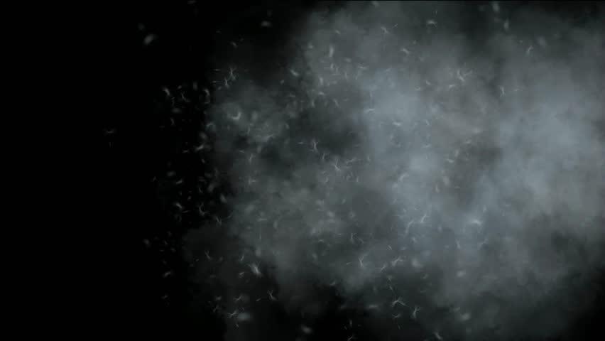Flying dandelion & catkins in smoke. | Shutterstock HD Video #3198214