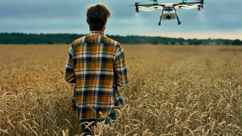 Farmer control agriculture drone spraying pesticides to grow wheat field. Shot in Red Epic Dragon