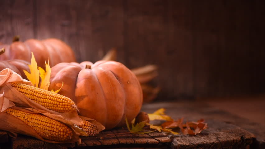 Thanksgiving Day. Pumpkin, Squash. Happy Thanksgiving Day wooden Table Background decorated with pumpkins, corn comb, candles and autumn leaves garland. Holiday Autumn festival scene, Fall, Harvest 4K | Shutterstock HD Video #32080723