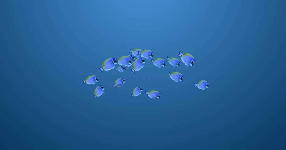 A school of fish swims across the frame. Matte included for easy compositing.