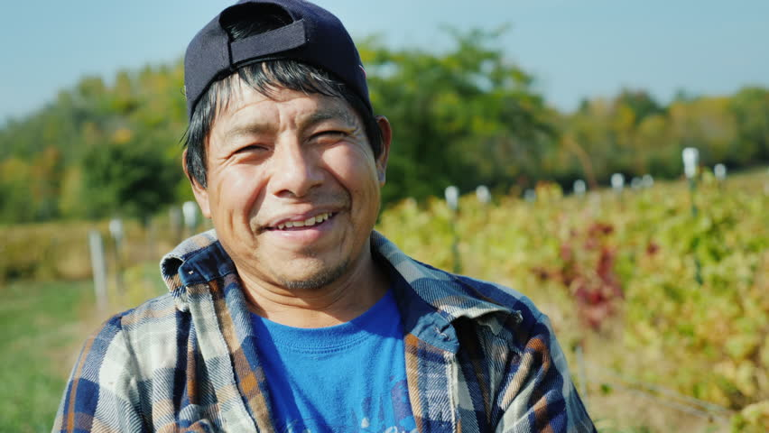 Portrait of a Mexican working farmer. Standing on the field, looking at the camera, smiling Royalty-Free Stock Footage #32268118
