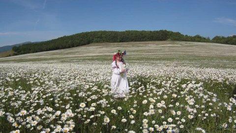 Beautiful Ukrainian girl in a traditional dress in a field.