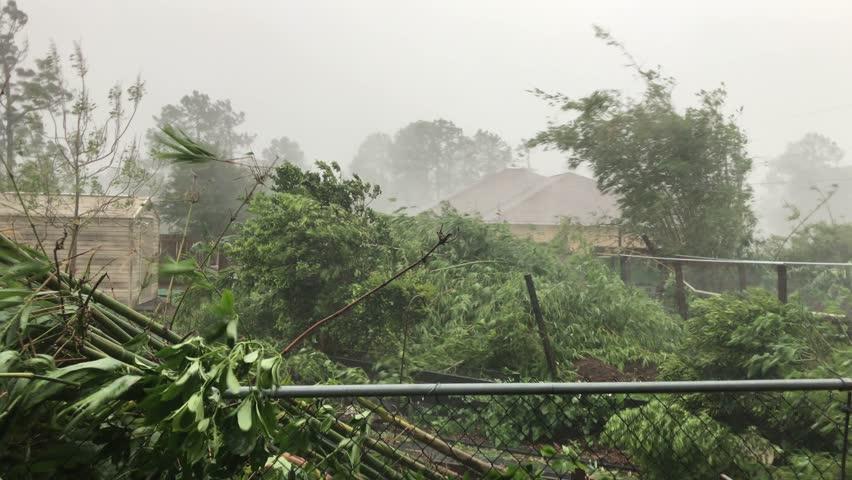 Florida - United States - September 11, 2017: Brawny wind damages a neighborhood as hurricane Irma strikes Florida, USA #32361808