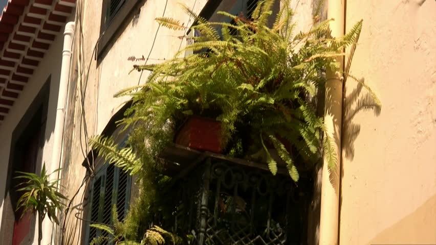 elegant balcony part 2 Funchal ( Madeira ) September 2012