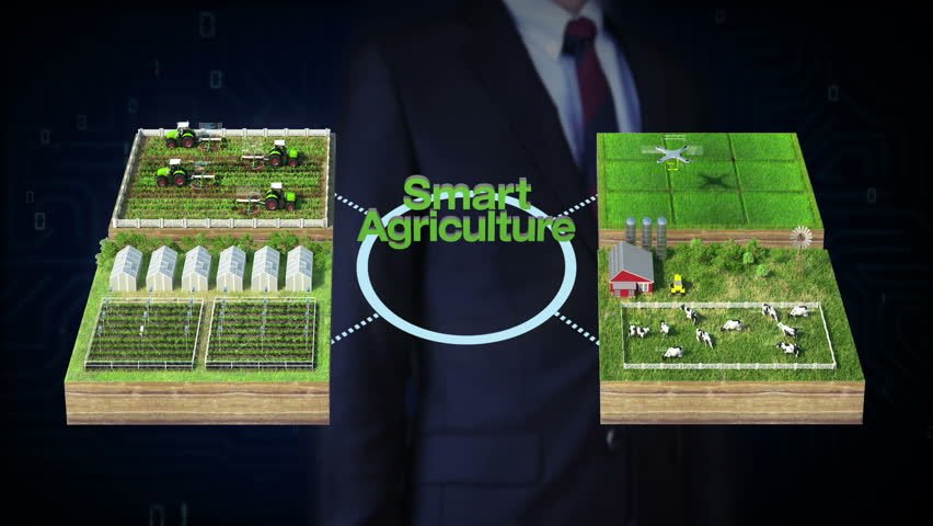 Businessman touch 'Smart agriculture' technology, smart farm, sensor connect vinyl house, green house. connect internet of things.4th Industrial Revolution. | Shutterstock HD Video #32607976