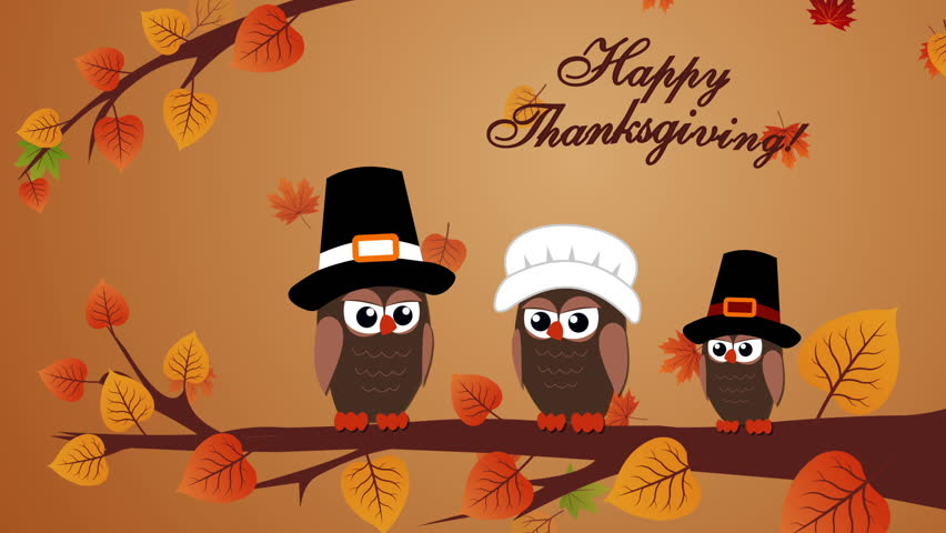 Thanksgiving Day Animation with owls and autumn leaves. Motion graphics