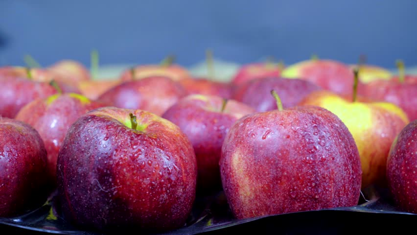 Red fresh apples close-up. | Shutterstock HD Video #32868847