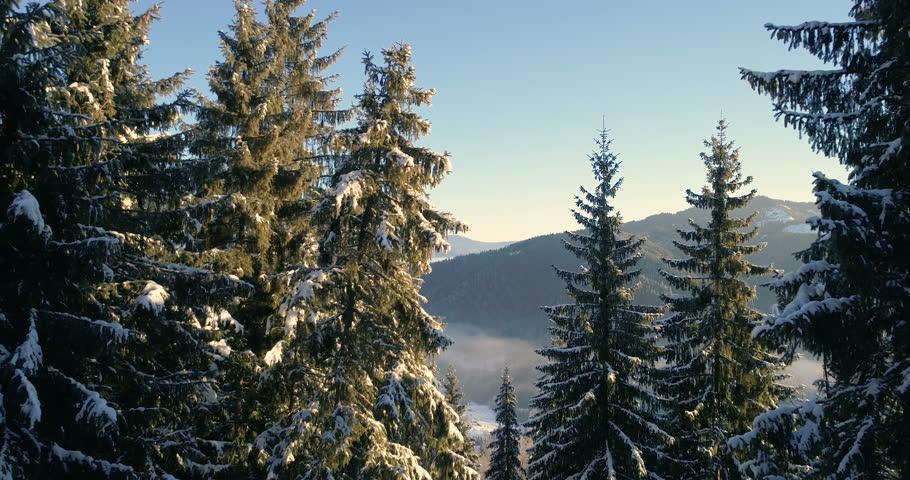 Drone in a wintery wonderland.   Shutterstock HD Video #32960920