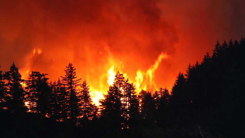 Large forest fire burns the tree covered side of a mountain near Portland Oregon | Shutterstock HD Video #33022819