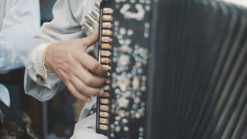 An adult man plays an accordion in a national costume. Musical quartet playing. Musicians perform at the concert. The musician plays the accordion. Street musicians