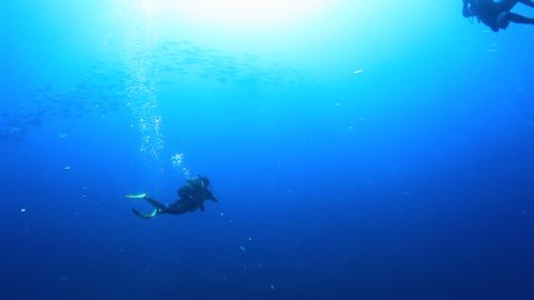 SCUBA diver in open blue water approaches a shoal of fish before turning and giving the ok sign to the camera