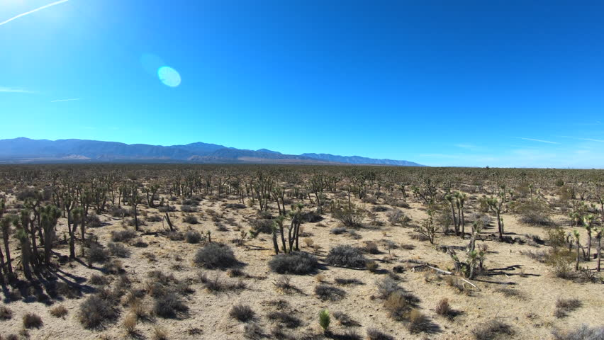 Ascending aerial view of Mojave Joshua Tree desert landscape between in Southern California.   | Shutterstock HD Video #33274183