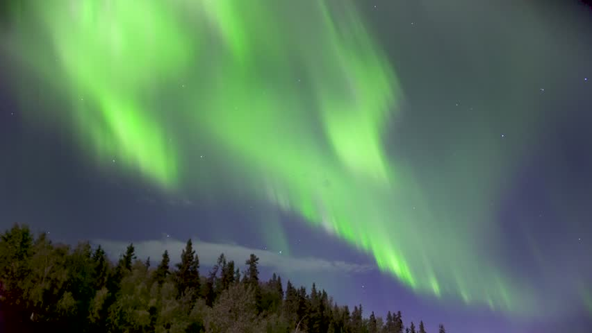 Aurora Borealis (Northern Lights) Dancing Over Trees in Alaska in Real Time (not timelapse)   Shutterstock HD Video #33366268
