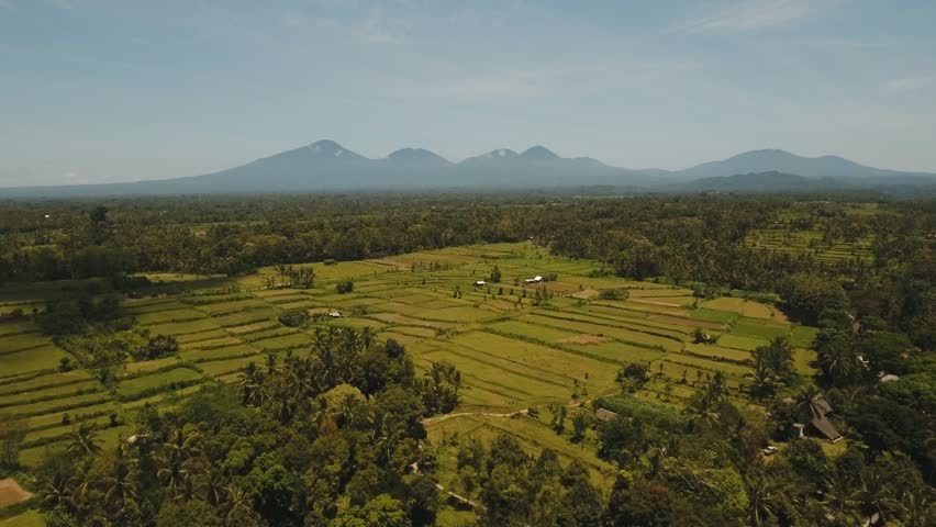 Mountain village with farmlands, fields with crops, trees.Aerial view of rural houses, mountains, farmlands located in the valley of the island of Bali. Indonesia. 4K video. Aerial footage. | Shutterstock HD Video #33380131