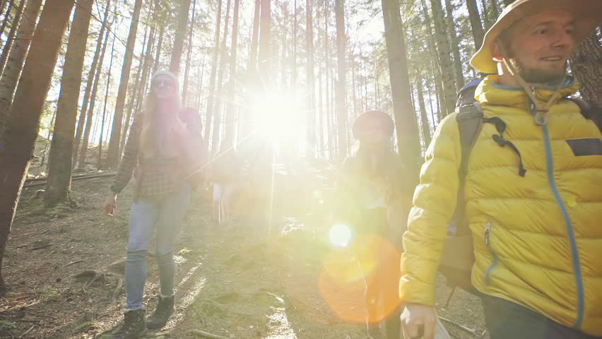 Group of people going down in mountain forest | Shutterstock HD Video #33923623