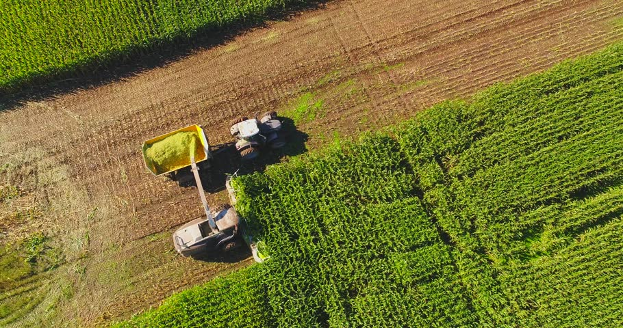 Farm machines harvesting corn in Autumn, breathtaking aerial view.