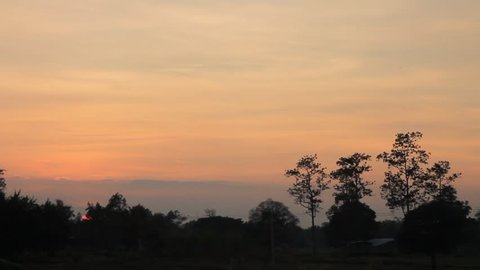 sunset with silhouette forest and tree