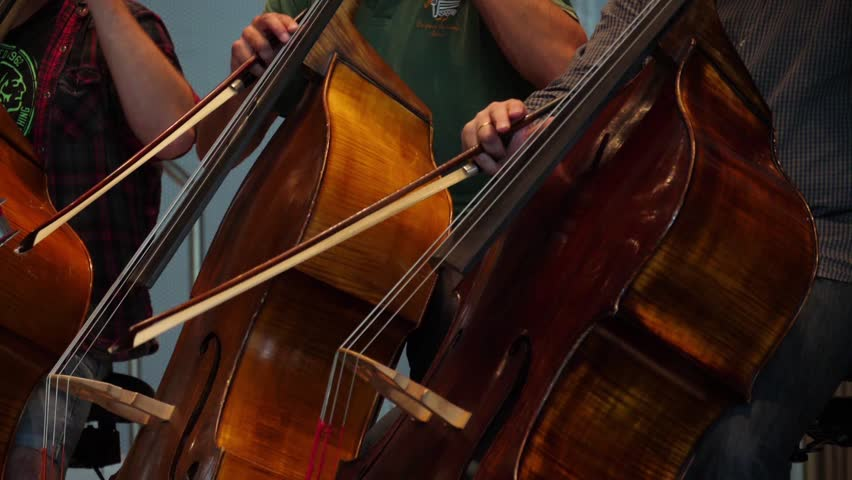 Cellist playing cello in orchestra slow motion | Shutterstock HD Video #34078513