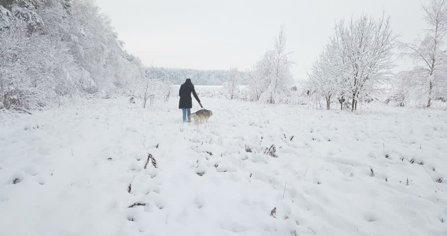 Happy beautiful young girl teach her cute Siberian husky dog and walk through fresh white snow on a winter field. Christmas and New Year fun active outdoor time away big city life. Urban lifestyle. | Shutterstock HD Video #34227826