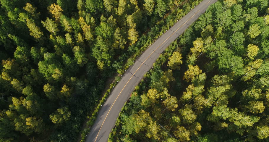 Aerial Drone Footage View: Flight over trail through autumn forests. #34255837