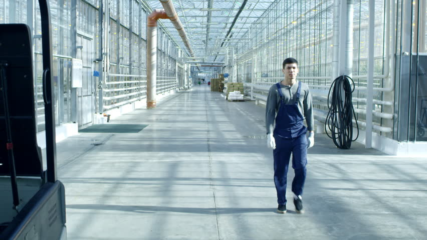Tilt down of serious young man in blue overalls and gloves walking along hall of large industrial greenhouse #34314574