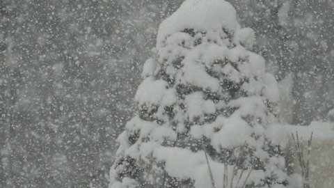 A view of the snow and the dancing snow that continues. _3