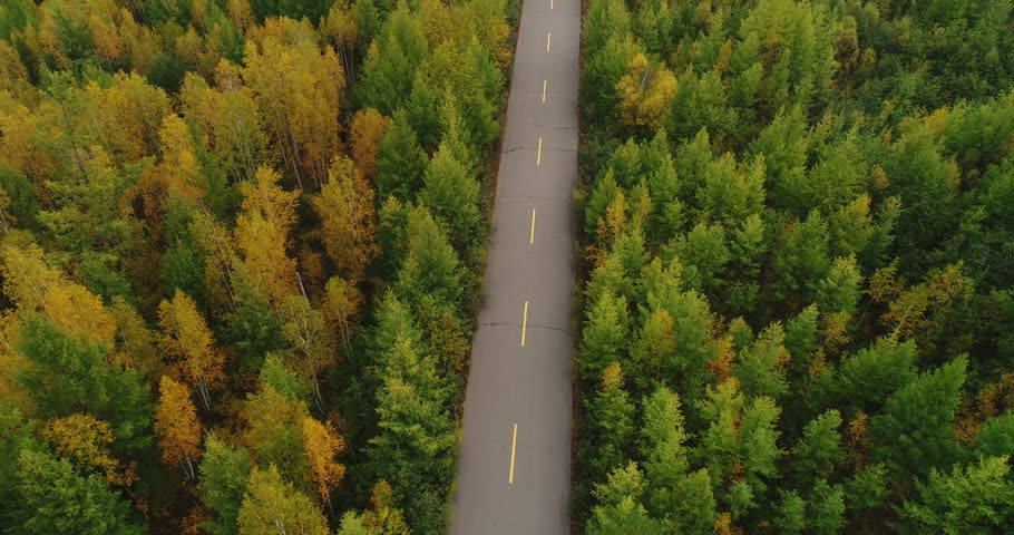 Aerial Drone Footage View:Rising up from trail through autumn forests landscape #34414237