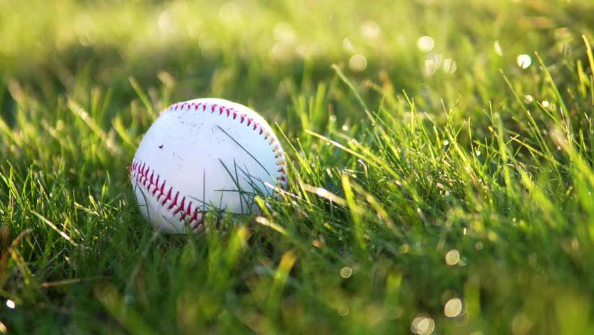 Baseball Picked Up By Running Fielder On Grass With Shadow In 4K Summer