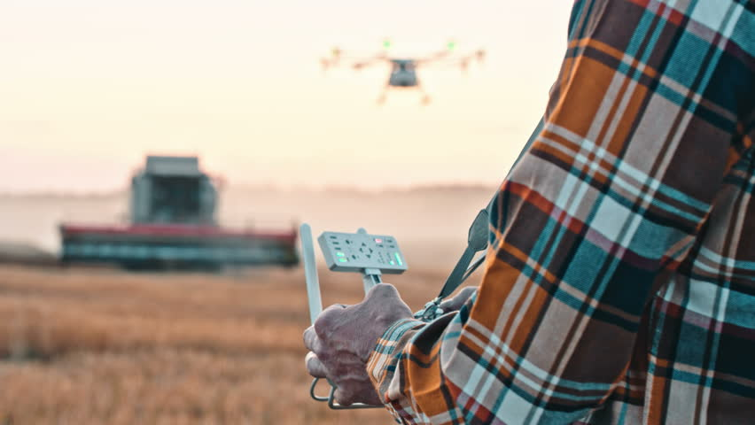 Farmer control agriculture drone fly to sprayed fertilizer on the wheat field
