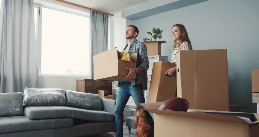 Young people bringing last boxes with things in new apartment. Young husband hugging wife. Cute dog walking near to couple in love. | Shutterstock HD Video #34760860