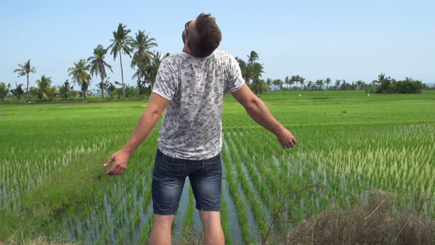 Happy man with wide open arms enjoying day on rice field    Shutterstock HD Video #34786051