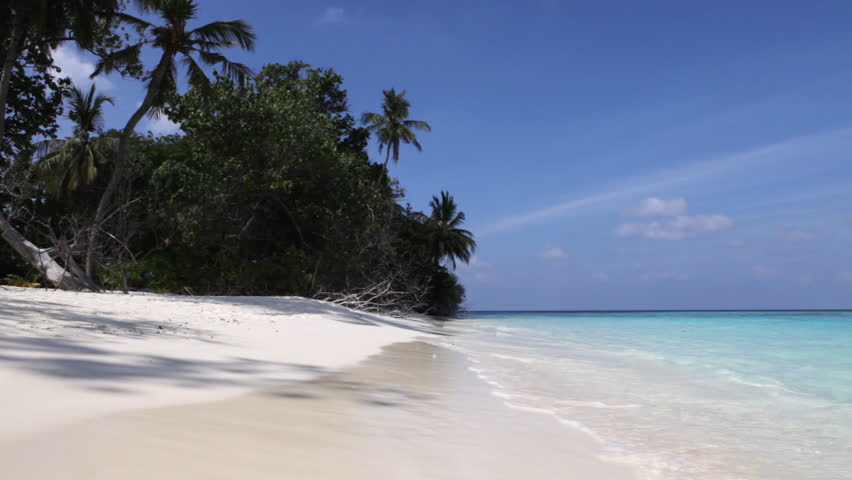 Maldives 5 - beach   Shutterstock HD Video #350245