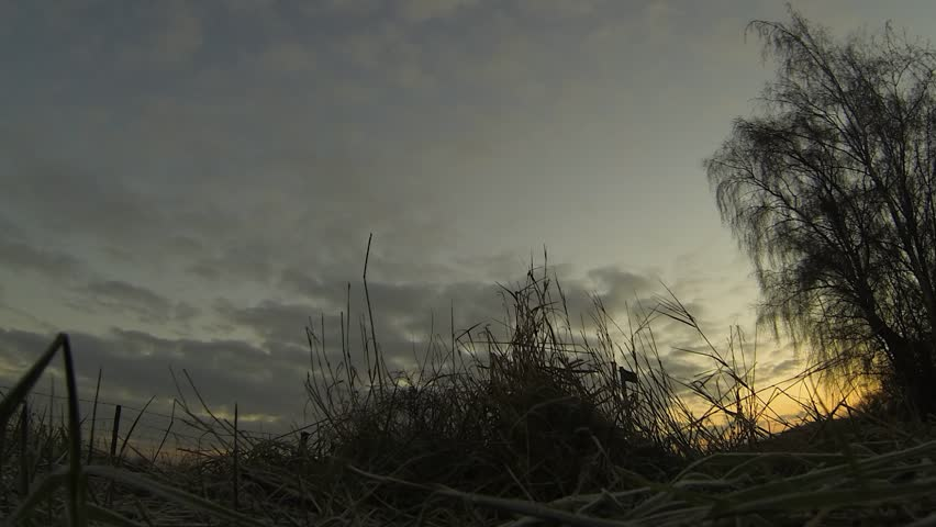 Sunrise at winter, early morning in a field. Timelpase video at dawn.   Shutterstock HD Video #3510068