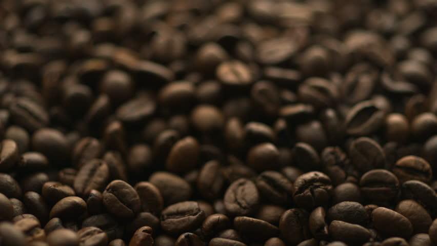 Header of coffee bean
